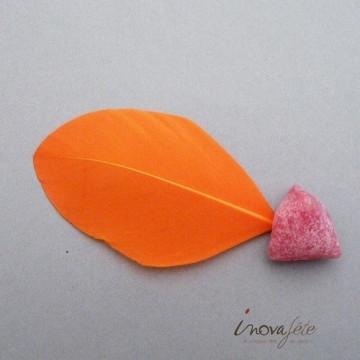Plume plate orange - Label Fête
