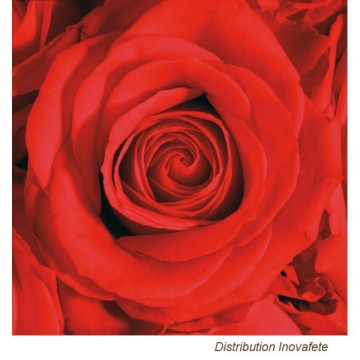 Serviettes papier Rose Rouge 33x33 cm
