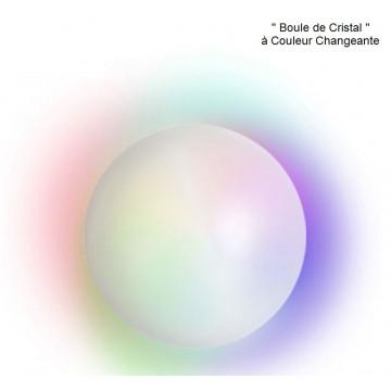 Boule de cristal lumineuse Label Fête Hillion