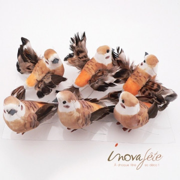 Oiseau orange chocolat /6 - Label Fête