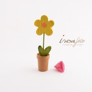 Fleur bois en pot