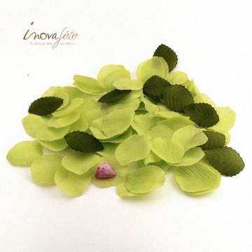 Pétale vert et feuille /100 - Label Fête