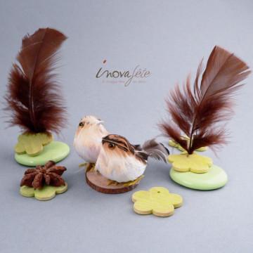 Couple d'oiseaux sur rondin de bois - Label Fête