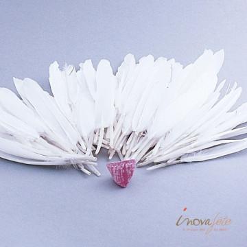 Plumes blanches /92 - Label Fête
