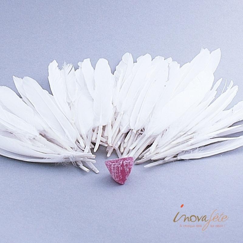 Papillon bleu sur tige 6 accessoires et d coration de f te - Papillon sur tige ...