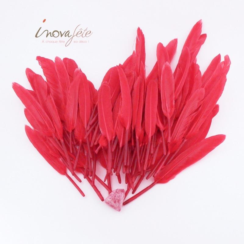 Plumes rouges /92 - Label Fête