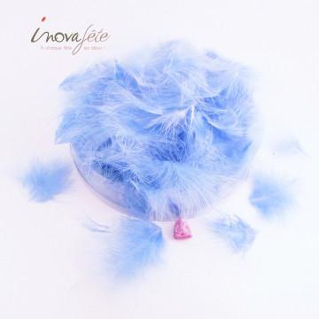 Plumes bleu /90 - Label Fête