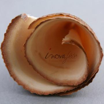 Cône de bois naturel - Label Fête