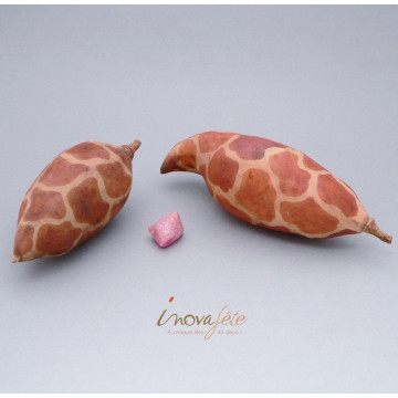 Graine de baobab - Label Fête