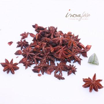 Fleur d'anis étoilé - Label Fête