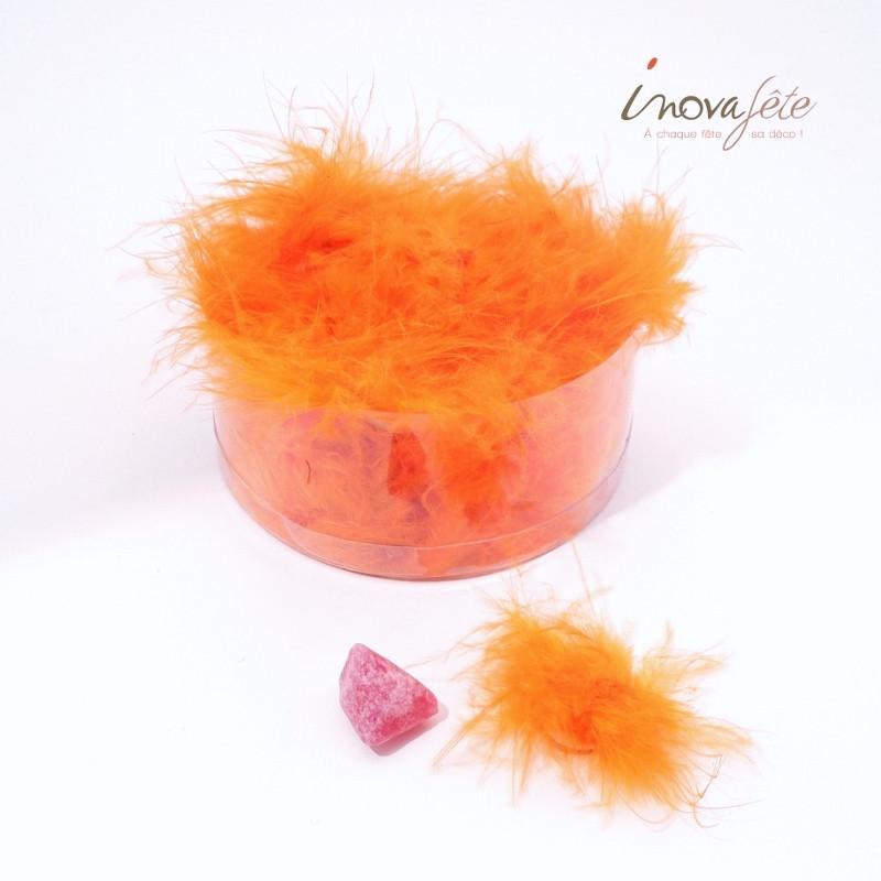 Plumes orange avec pastille autocollante /36 - Label Fête