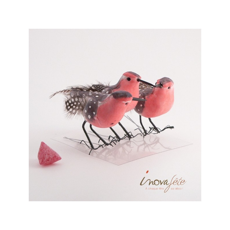 Oiseaux roses et gris /3