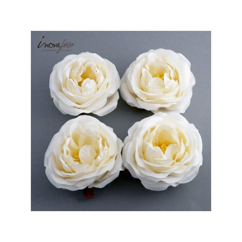 Pivoine blanche /4