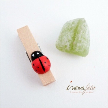 Pince coccinelle /18